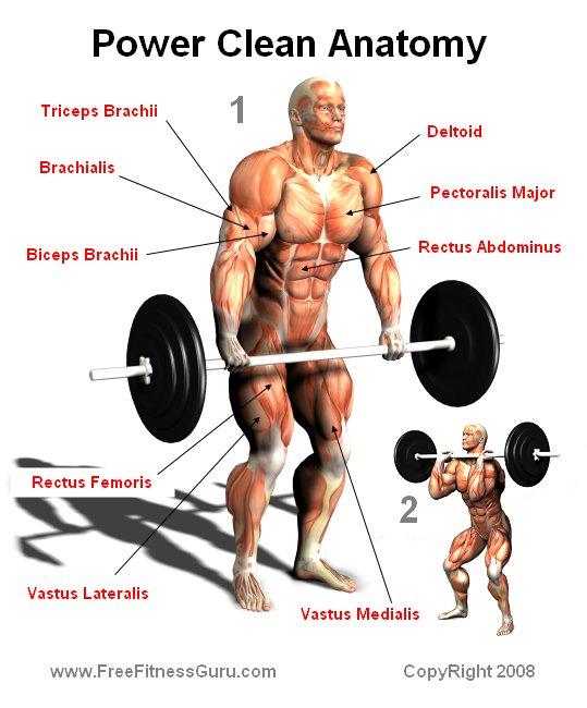 Levantamento de peso olímpico como preparação nos esportes 10