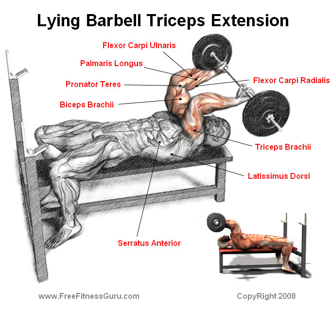 tricep extension lying